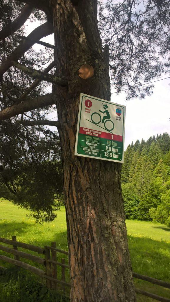 indicatoare pentru biciclisti
